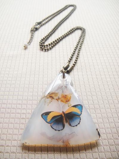 Mariposa Azul Agata A